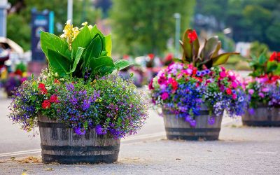 How to build good planters