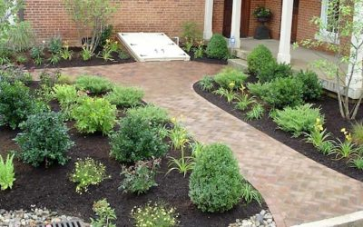 What are the benefits of mulch?